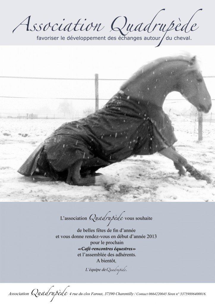 L'association Quadrupède vous souhaite de belles fêtes de fin d'année. flyerfetesassoquadrup